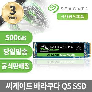 씨게이트 바라쿠다 Q5 M.2 NVME SSD 500GB