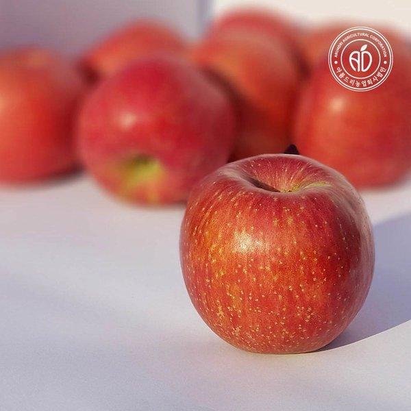 경북 안동 꿀사과 흠집 부사사과 5kg 꼬마 (26-30과)