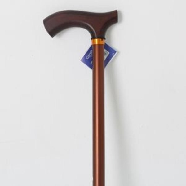 노인 보행 보조 지팡이 할머니 할아버지 선물용 버튼