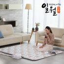 일월 온수매트 더블 2인용 전기 요 매트 / 품안애