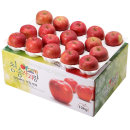 사과를 박스채 담아 청송햇부사 10kg(28~34과)-중과