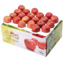 사과를 박스채 담아 청송햇부사 10kg(40~42과)-소과