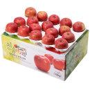 사과를 박스채 담아 청송햇부사 10kg(34~36과)-중과