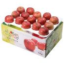 사과를 박스채 담아 청송햇부사 10kg(28~30과)-중대과