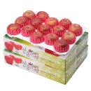 사과를 박스채 청송햇부사 5kg+5kg(15~17과)-팬캡