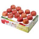 사과를 박스채 담아 청송햇부사 5kg(13~14과)-중대과