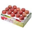 사과를 박스채 담아 청송햇부사 5kg(15~16과)-중과