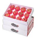정성을 담아 청송사과 선물2호 5kg+5kg(11~12과) 팬캡