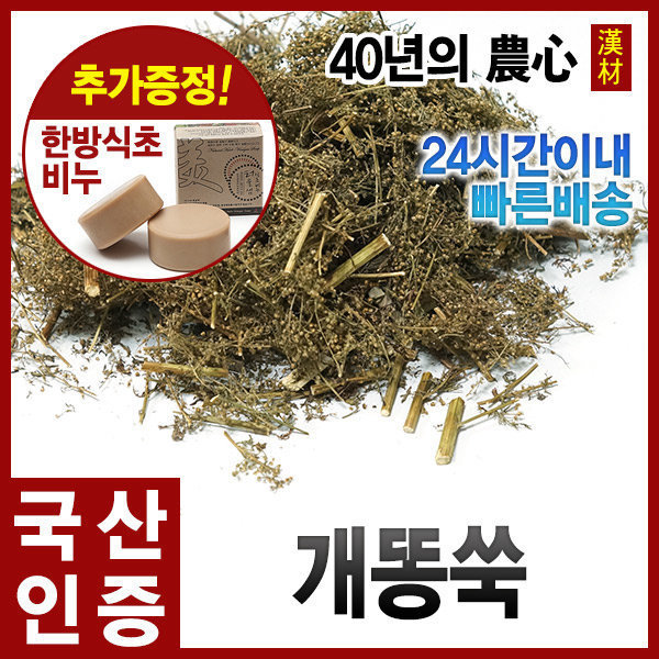 국산 토종 개똥쑥 300g 개똥쑥차 말린개똥쑥차