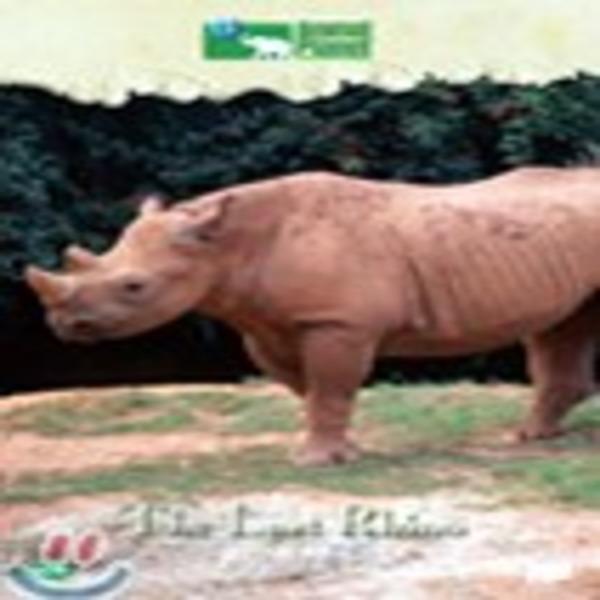 디스커버리 : 마지막 코뿔소  Discovery Animal Planet