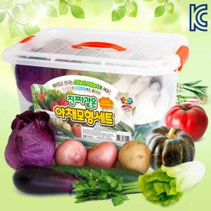 진짜같은야채모형세트/무독성/소꿉놀이/모형야채/시장