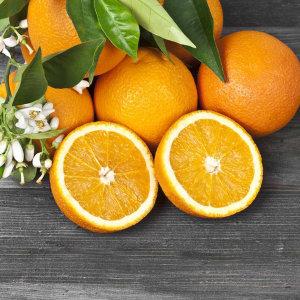 거북농산) 미국산 네이블오렌지 17kg 86-88과