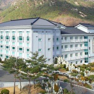  5%할인 가야호텔(경북 호텔/성주/대구/구미/문경)