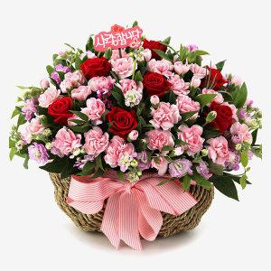 당일꽃배달장미 카네이션 꽃바구니 어버이날 A1652