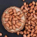 서래푸드 국내산 서산 생땅콩 500g+500g