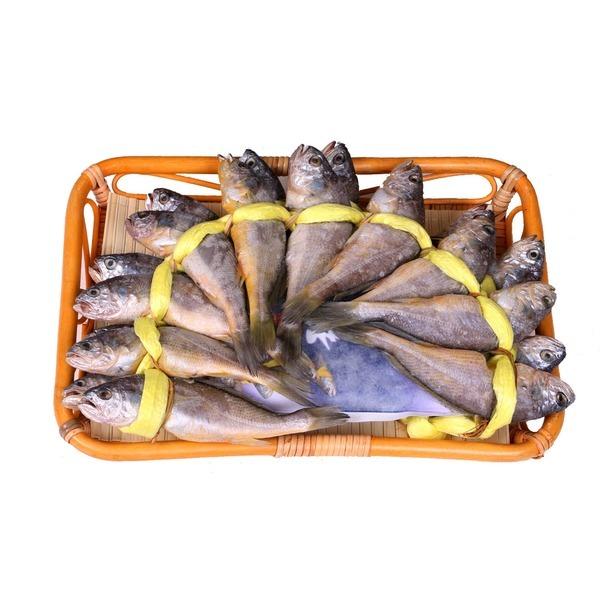 영광 법성포굴비 20미(19cm/2.10kg)무료배송.진성굴비