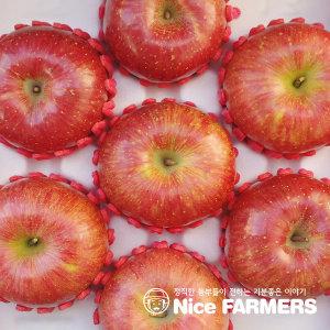 산지직송 청송 사과 가정용흠과 9kg내외 /중대과