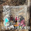 등산 비닐 쉘터 텐트 천막 비박 캠핑 1인용(스페셜)