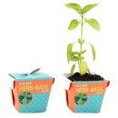 에코팟_허브 바질 식물키우기 화분 정원/미니/재배기