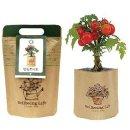 플라워백 -방울토마토 식물키우기 화분 정원