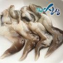 새조개 특품500g(실중량/손질전 2kg)내장제거/자연산