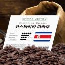 코스타리카따라주 500g/원두커피/원두/커피 당일로스팅