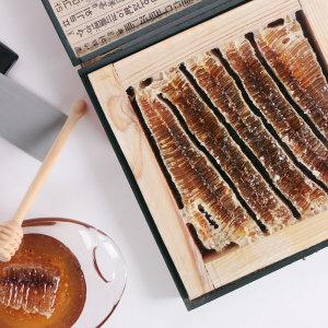 산지직송 국내산 벌집꿀 2.0kg 선물세트(지함포장)