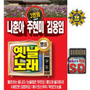 SD 나훈아 주현미 김용임 옛날노래 88곡 mp3 노래칩 Q
