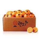(퓨어스펙) 오렌지 중소과160g내외X25과
