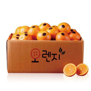 (퓨어스펙) 오렌지 중과 200g내외X30과