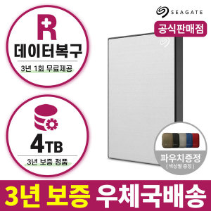 외장하드 4TB 실버 New Backup Plus +마스크10매증정+