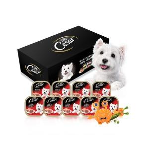 시저캔 쇠고기 100g 18개 /강아지사료