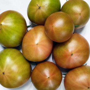 대저 짭짤이 짭짤한맛 단짠 토마토 랜덤과 2.5kg실중량