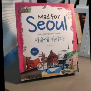 서울에 취하다 허안나
