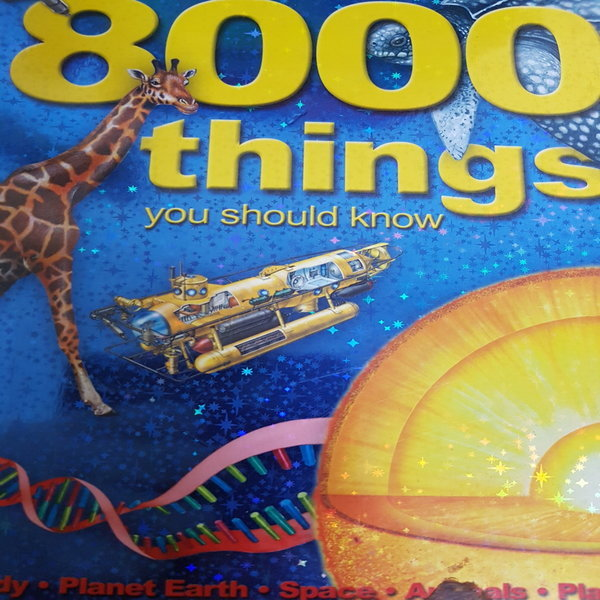 8000Things You Should Know/MK .2014