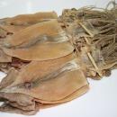 오징어 마른오징어 건오징어 20마리(약1kg) 동해안發