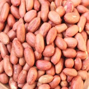 땅콩 볶은땅콩 볶음땅콩 볶음알땅콩 1kg 실속 신선상품