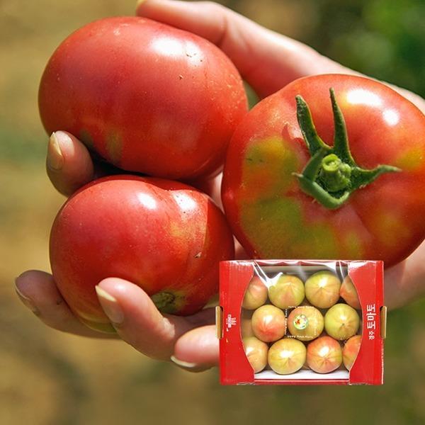 (농협) 경주 이사금 찰토마토 2kg / 동양종 (M)