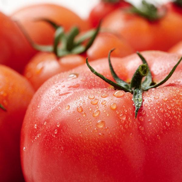 (농협) 경주 이사금 찰토마토 5kg / 동양종 (M)