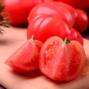 찰토마토 대과 3kg(1-2번)