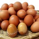 계란 HACCP인증 훈제 부활절 구운계란 대란 60알+소금