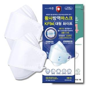 국내산 KF94 마스크 100매 개별포장 대형 식약처 인증