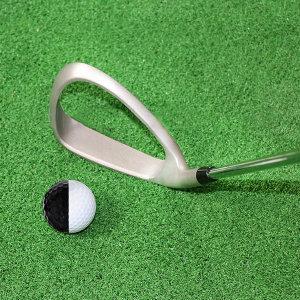 골프 스윙 연습기 아이언 임팩트 교정기 레슨 골프채