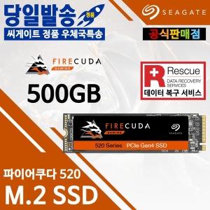 Seagate 파이어쿠다 520 M.2 SSD (500GB) 우체국특송