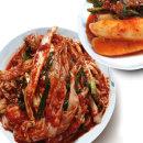 빛 국산 겉절이2kg+총각김치2kg 열무/겉절이/김치 V