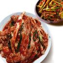 빛 국산 배추 겉절이 2KG+열무김치 2KG/김치 먹보야 V