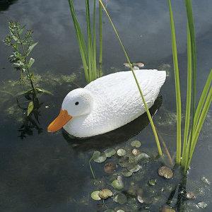 우빙 1382540 (78236) 물에 뜨는 오리 백색 연못 장식
