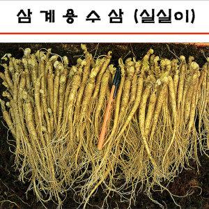 세척안함 삼계탕용인삼 실실이인삼 1채750g 갈비탕용