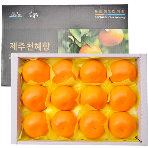 천혜향 과일 선물세트 제주 천혜향3Kg(특)대과(선물용)
