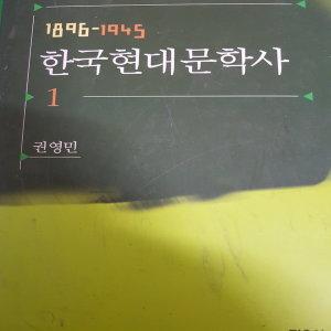 한국 현대문학사1.1896-1945/권영민 .민음사.2010